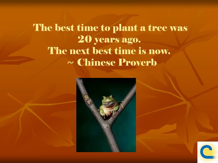 The best time to plant a tree was