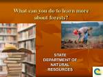 what can you do to learn more about forests