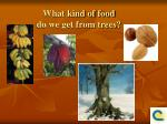 what kind of food do we get from trees