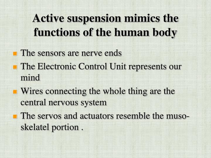 Active suspension mimics the functions of the human body