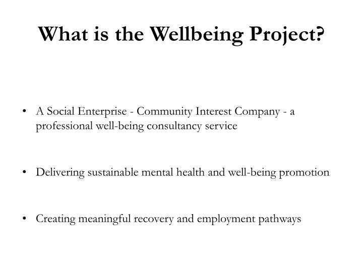 What is the wellbeing project