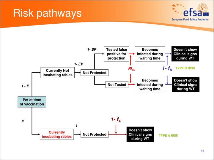 Risk pathways