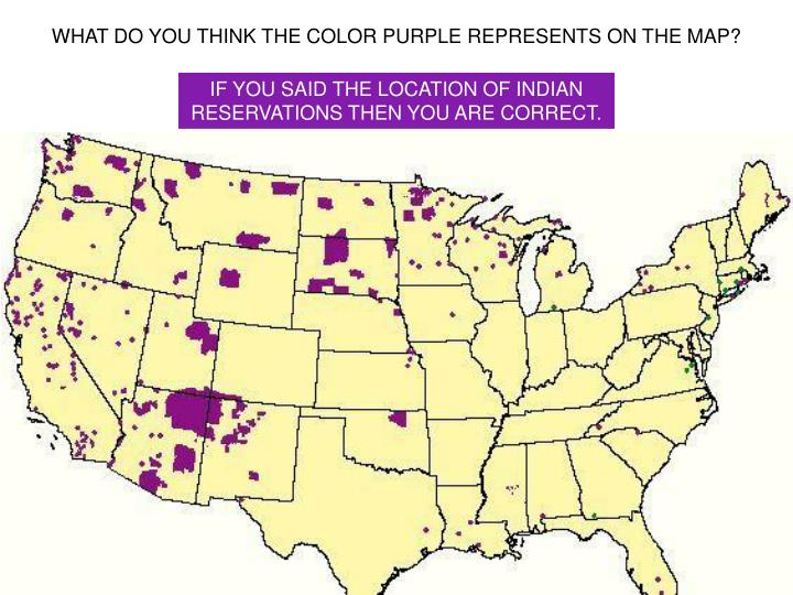WHAT DO YOU THINK THE COLOR PURPLE REPRESENTS ON THE MAP?