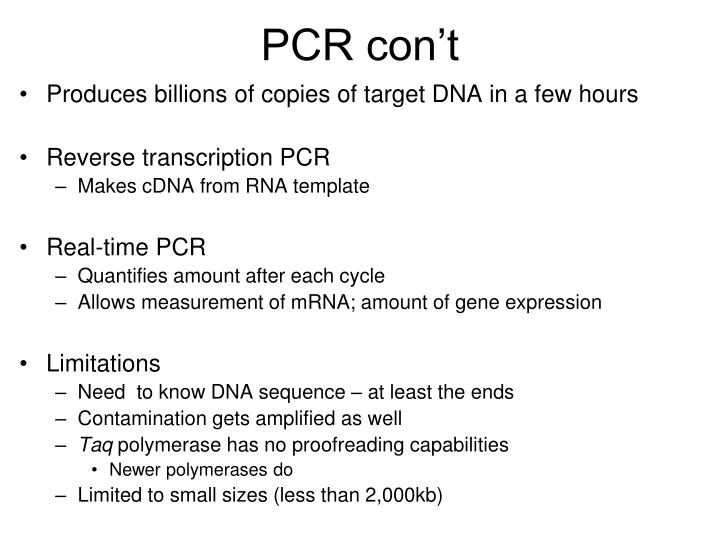 PCR con't