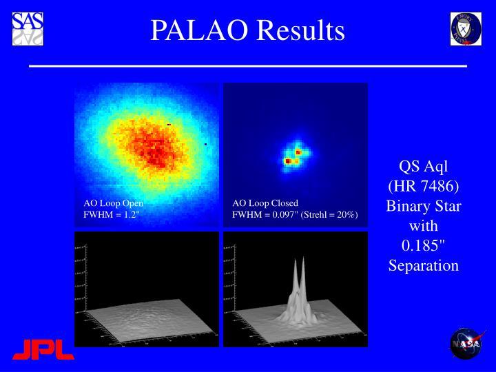 PALAO Results