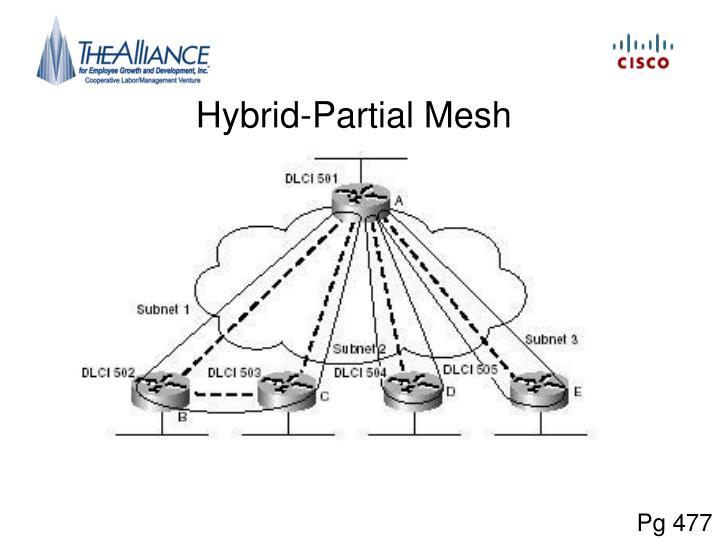 Hybrid-Partial Mesh