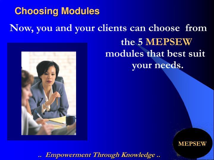 Choosing Modules