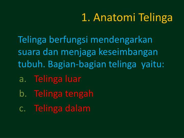1. Anatomi Telinga