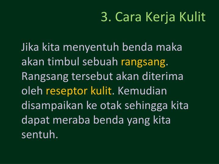 3. Cara Kerja Kulit