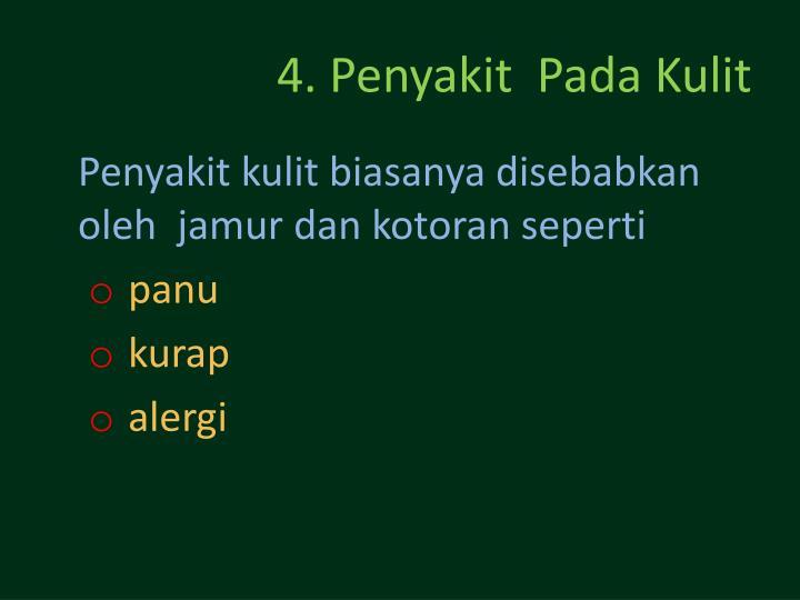 4. Penyakit  Pada Kulit