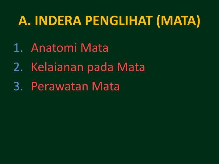 A. INDERA PENGLIHAT (MATA)