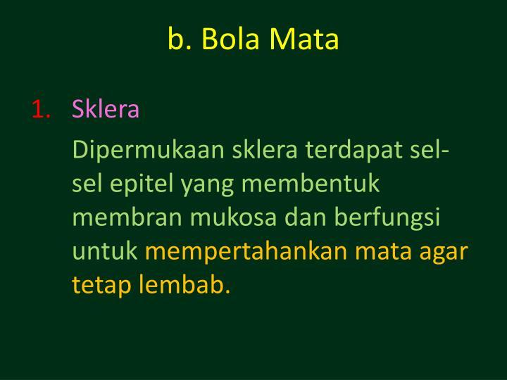 b. Bola Mata
