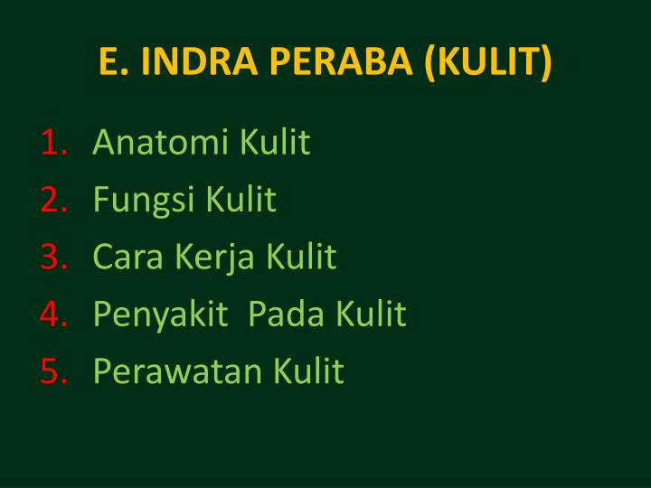 E. INDRA PERABA (KULIT)