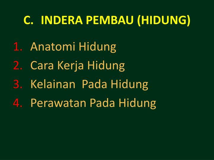 INDERA PEMBAU (HIDUNG)