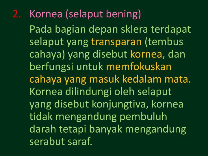 Kornea (selaput bening)