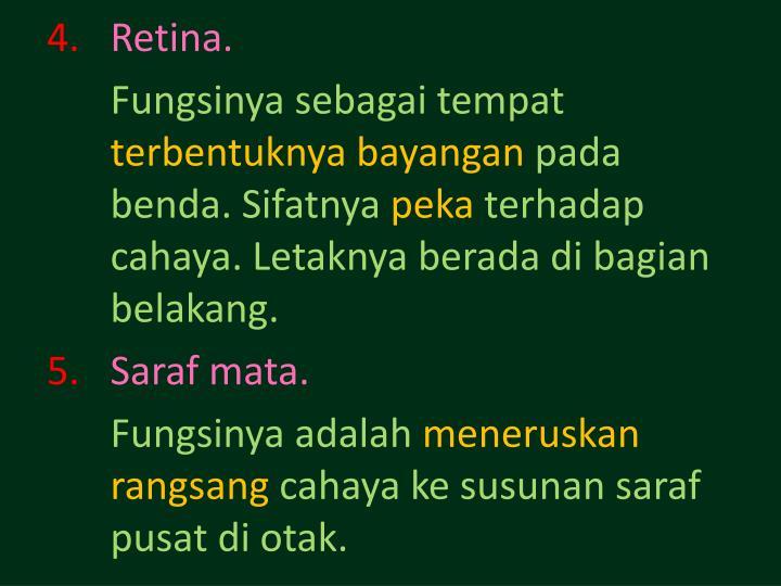 Retina.