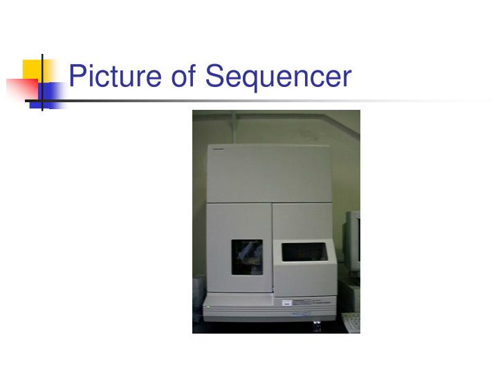 Picture of Sequencer