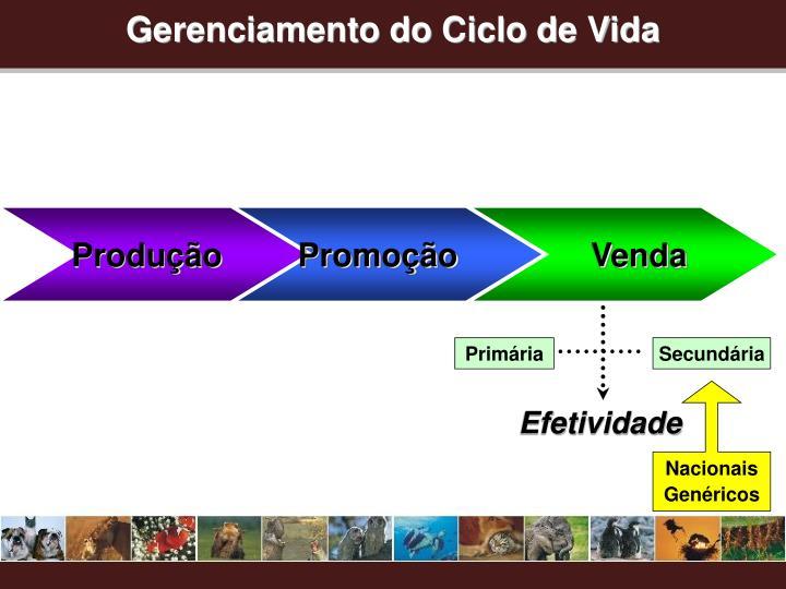 Gerenciamento do Ciclo de Vida