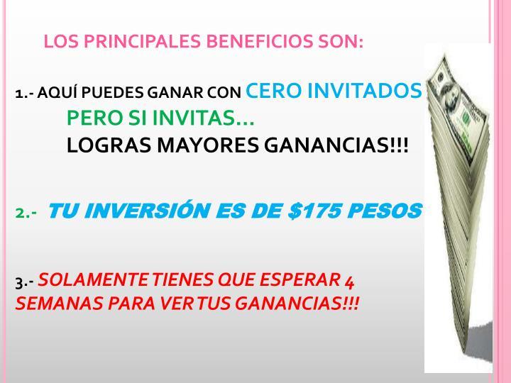 LOS PRINCIPALES BENEFICIOS SON: