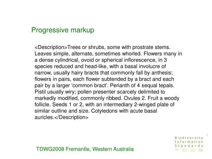 Progressive markup