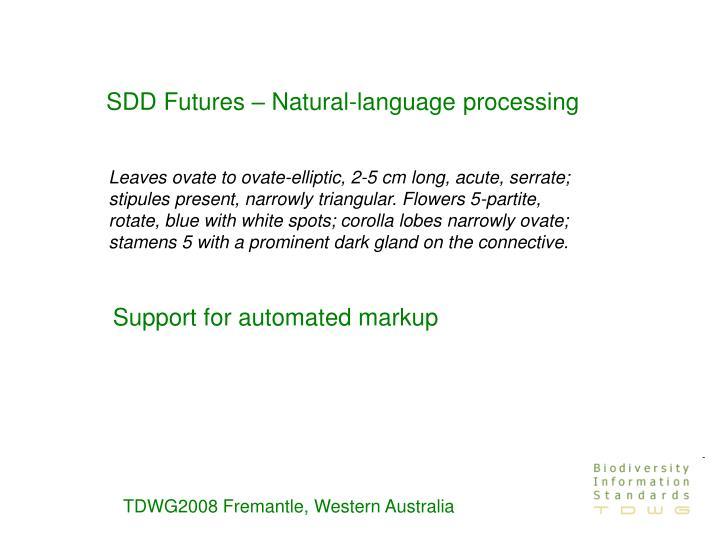 SDD Futures – Natural-language processing