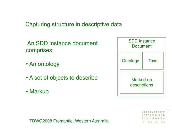 Capturing structure in descriptive data