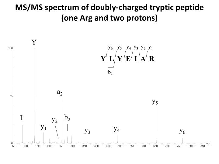 MS/MS spectrum of doubly-charged