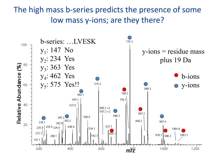 The high mass b-series predicts the presence of some low mass y-ions; are they there?