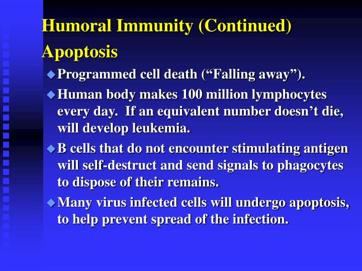 Humoral Immunity (Continued)