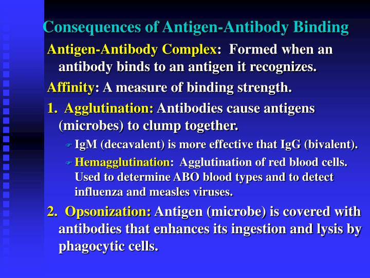 Consequences of Antigen-Antibody Binding