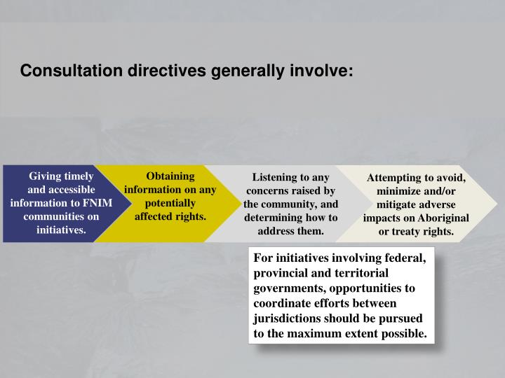 Consultation directives generally involve: