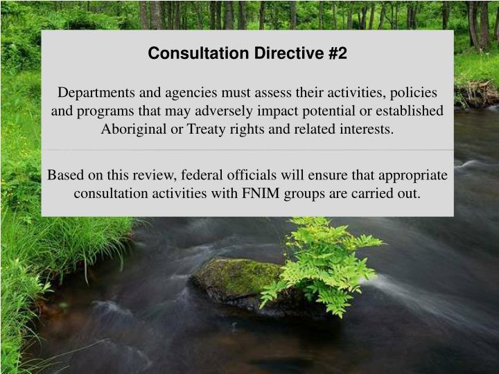 Consultation Directive #2
