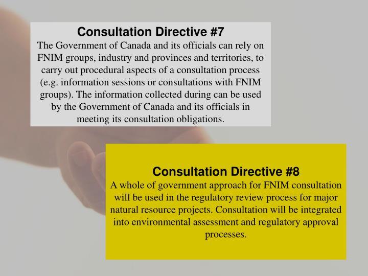 Consultation Directive #7