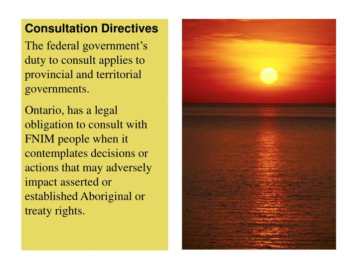 Consultation Directives