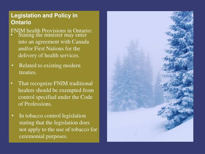 Stating the minister may enter into an agreement with Canada and/or First Nations for the delivery of health services.
