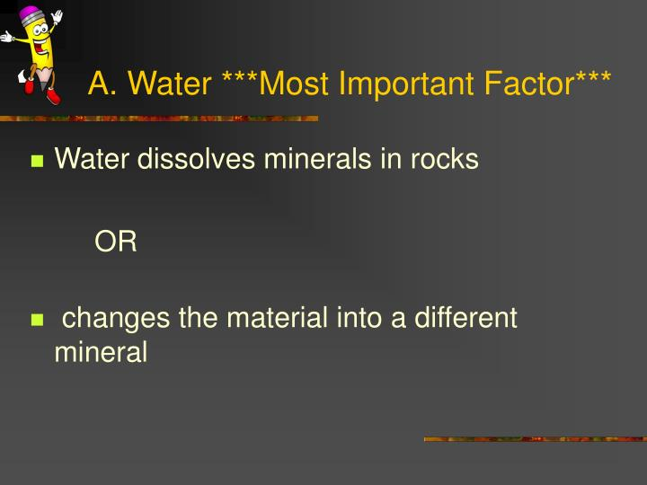 A. Water ***Most Important Factor***