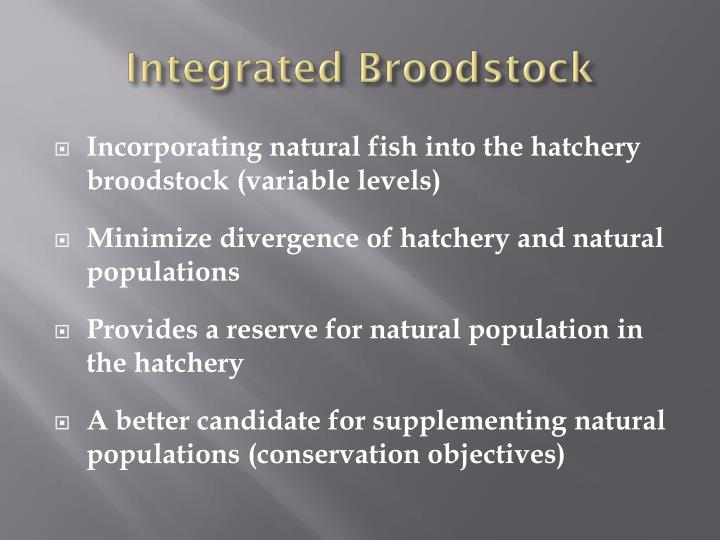 Integrated Broodstock