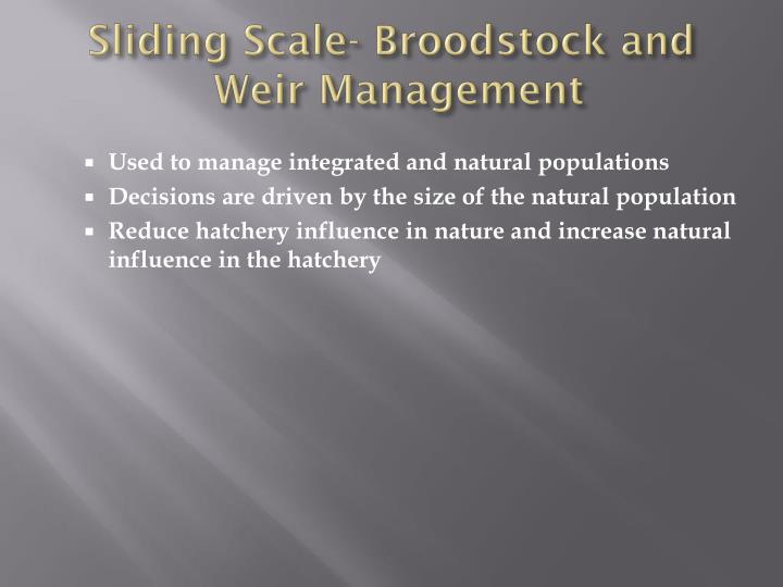 Sliding Scale- Broodstock and