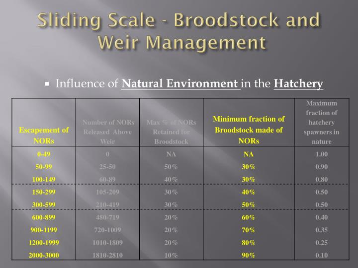 Sliding Scale - Broodstock and