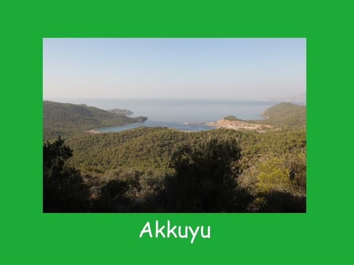 Akkuyu
