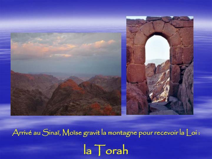 Arrivé au Sinaï, Moïse gravit la montagne pour recevoir la Loi :