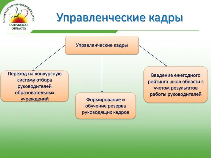 Управленческие кадры