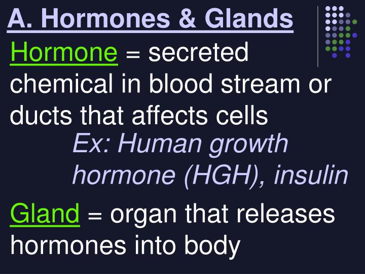 A. Hormones & Glands