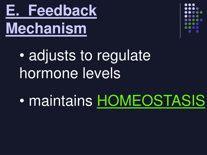 E.  Feedback Mechanism