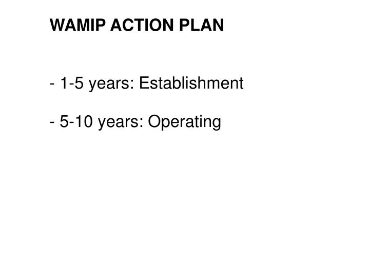 WAMIP ACTION PLAN