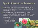 specific places in an ecosystem