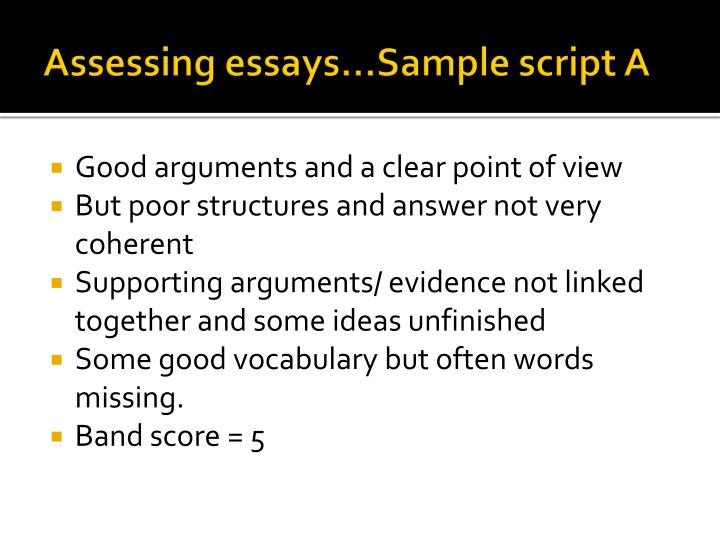writing point of view essay