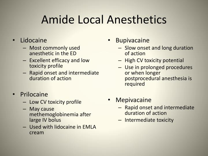 Amide Local Anesthetics