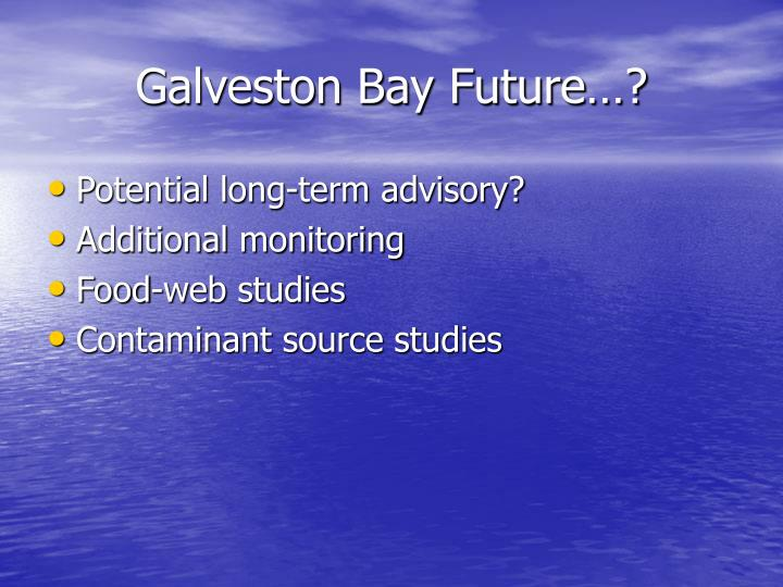 Galveston Bay Future…?