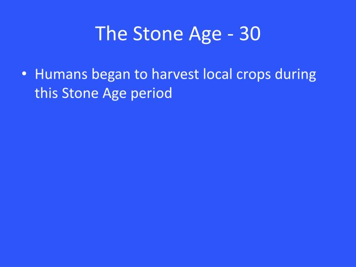 The Stone Age - 30